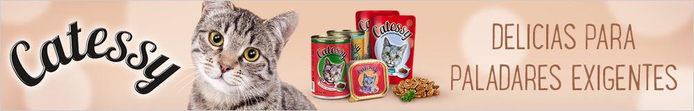 Catessy comida húmeda para gatos