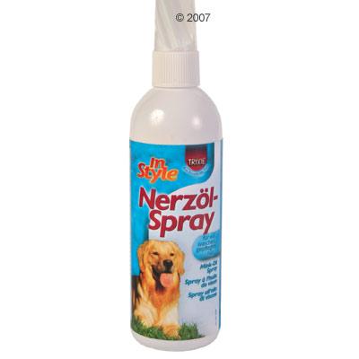 cuidados basicos para tu perro