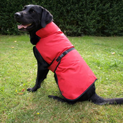 Chubasquero para perros Authentic Red - - Talla 70: longitud dorsal 70 cm