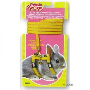 Conejo Consolador - Compra lotes baratos de Conejo