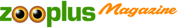 zooplus Magazine