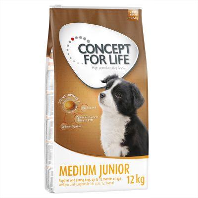 concept for life medium junior