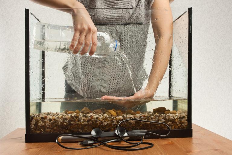 El primer acuario
