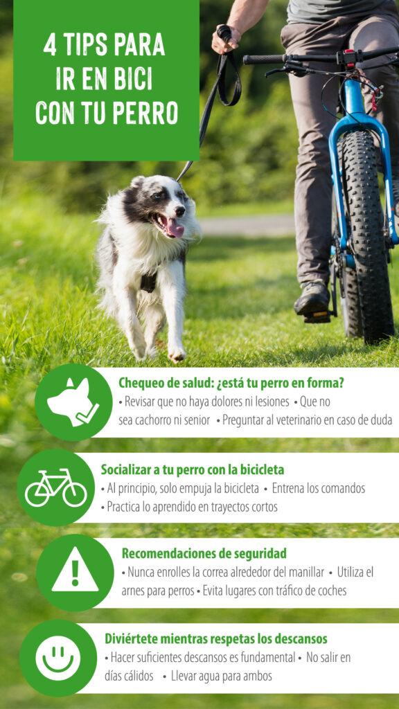 bici con perro