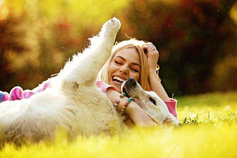7 razones por las que los perros hacen nuestra vida mejor