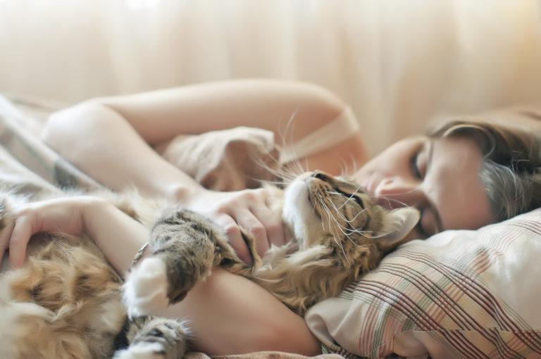 Dormir con el gato en la cama