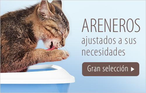 hygiene gatos