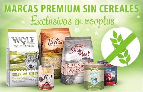 grain free food perros