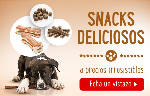 snacks dog training