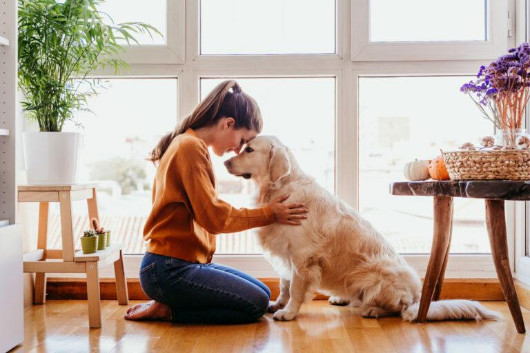 Pasear al perro durante la cuarentena