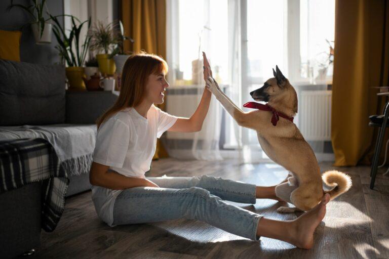 Cómo acostumbrar a tu perro a la rutina después del confinamiento