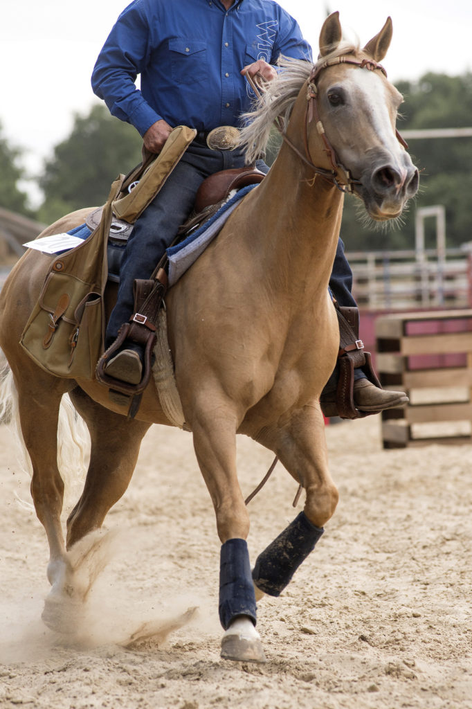 Montar a caballo a la inglesa o al estilo occidental