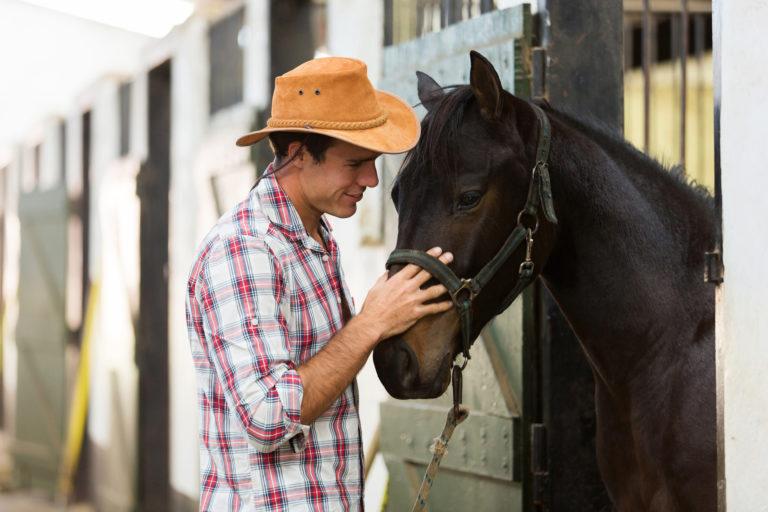 Susurrador de caballos