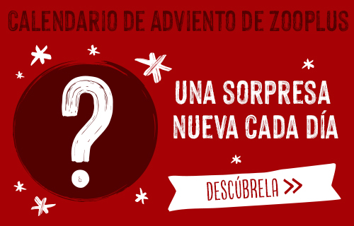 calendario de adviento zooplus
