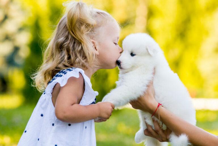 Besos de perros
