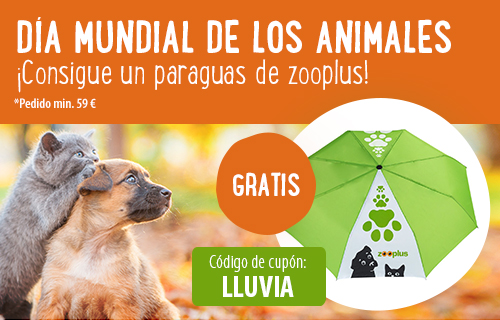 paraguas zooplus gratis