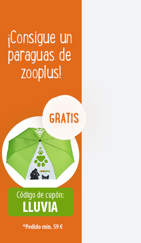 regalo zooplus right